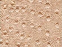 MARS 3 | Duvardan Duvara Halı
