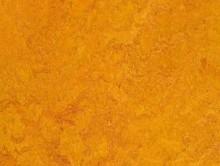 Real Marigold | Pvc Yer Döşemesi | Homojen